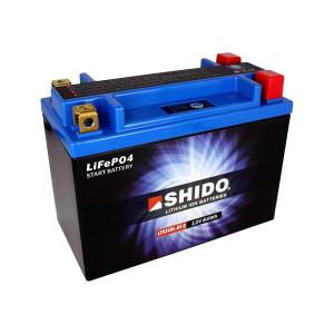 SHIDO LTX24HL-BS Q Lithium Ion - 12 V - 7 Ah - 420 A/EN